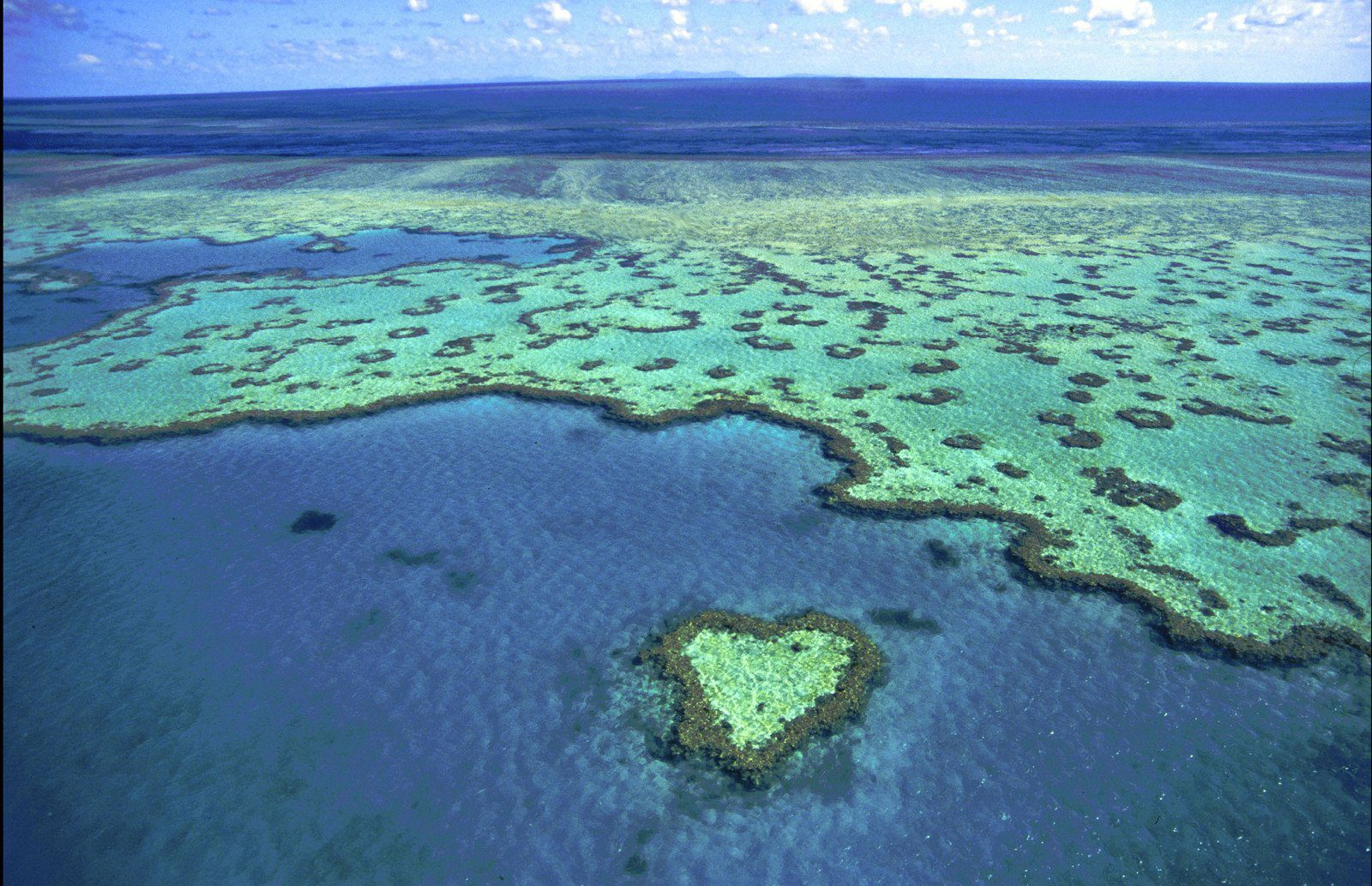 Diving on the Great Barrier Reef Australia
