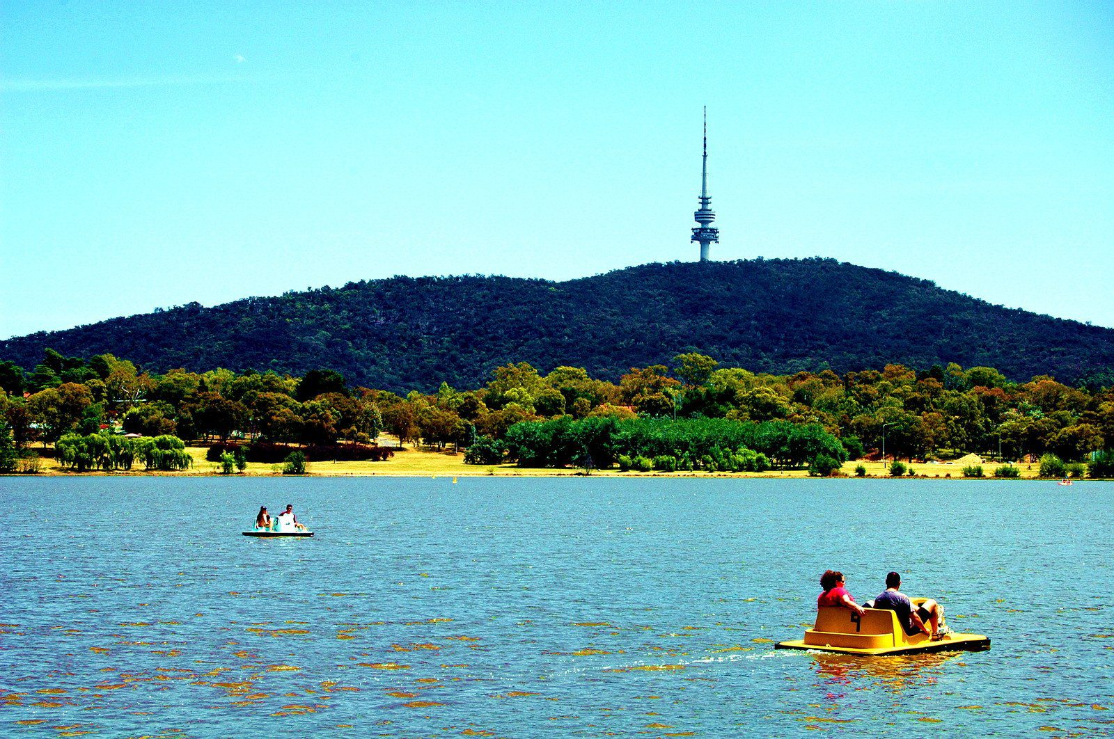 Black Mountain Tower in Canberra, Australia