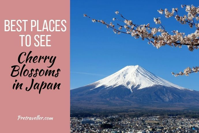 Best Places to See Cherry Blossoms in Japan